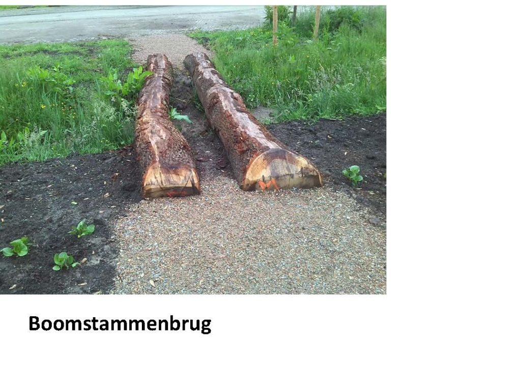 boomstammenbrug